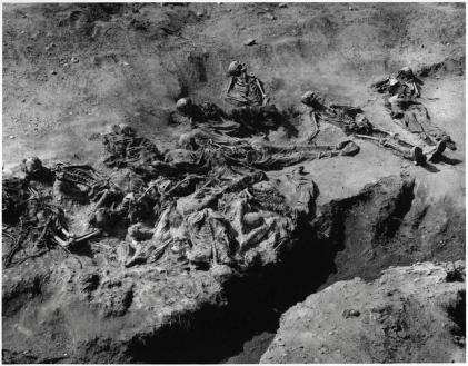 Settanta 70 1995 Massacro di Srebrenica ANP/TRIBUNAL/KOZLUK